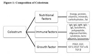 Composition of Colostrum